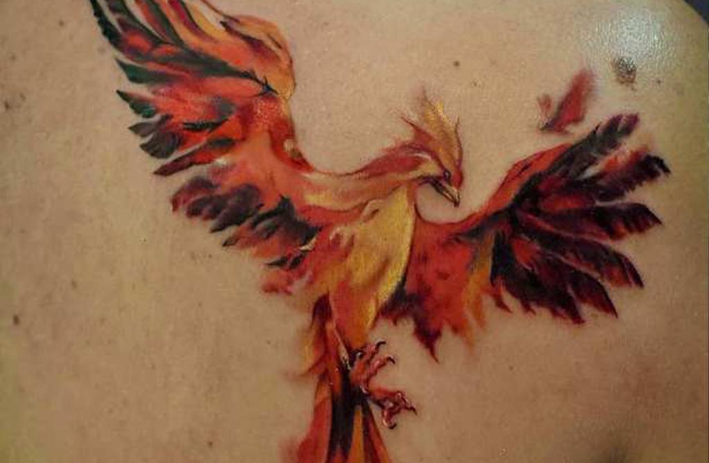 Ser un ave