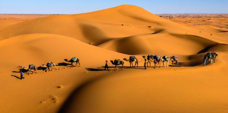 Maroc désert Sahara Tamnougalt
