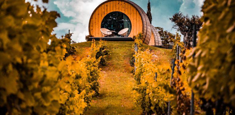 porto wine croisiere douro