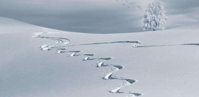 censé être laser game neige en laponie mais je trouve pas d'autres photos
