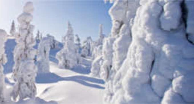 Jour 1 : Chez vous / Ivalo / Saariselkä - Je pars à la découverte du pays lapon !