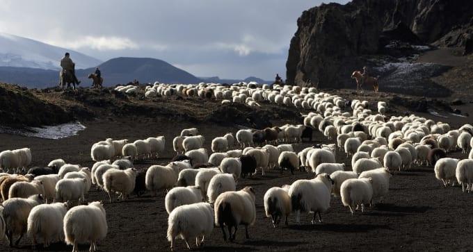 Autotour Merveilles d'Islande