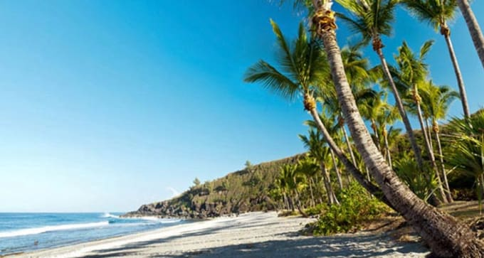 Découverte de la nature sur l'île de la Réunion