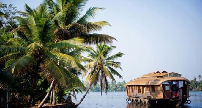 Epices & Ayurveda au Kerala