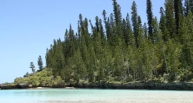 Jours 15, 16 : Nouméa - Ile des Pins