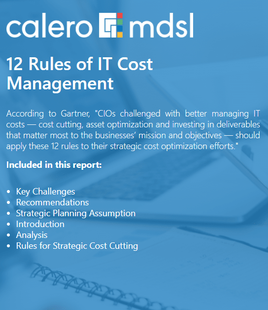 12 Rules of IT Cost Management