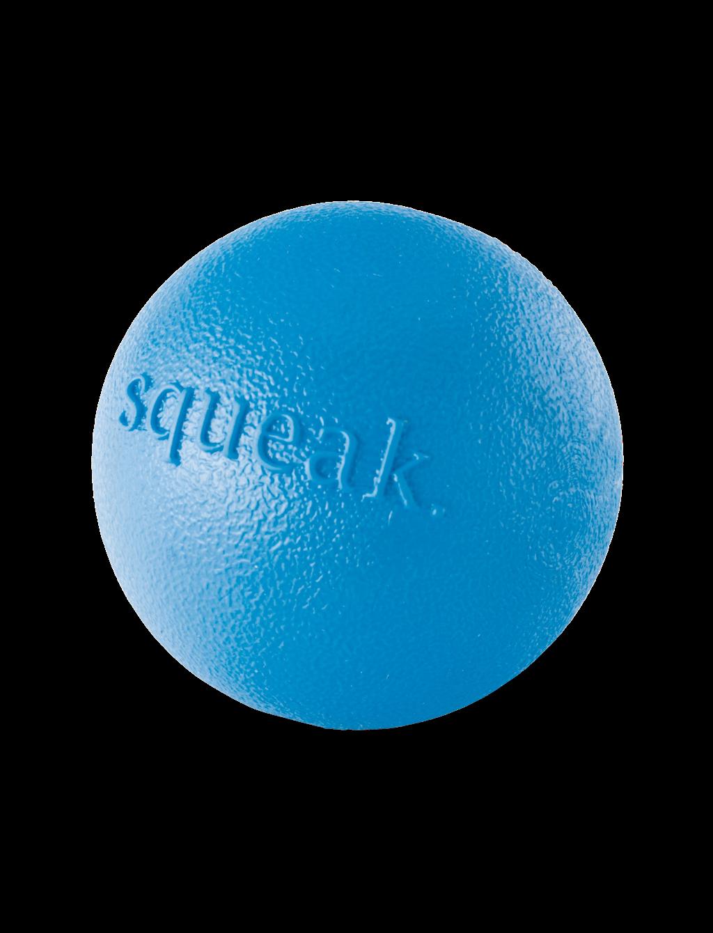 Blue Orbee-Tuff Squeak Ball