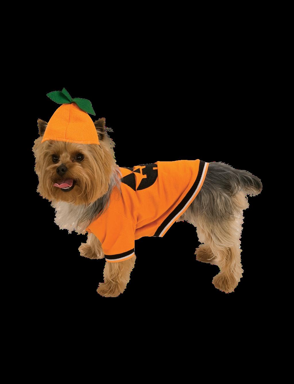 Pumpkin Costume, Large