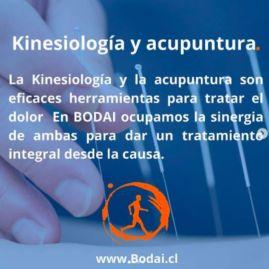 BODAI Kinesiología y  Acupuntura