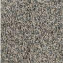 Carpet SP290012 SP2900 Frigate
