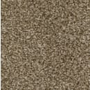 Carpet SP400012 SP4000 HotChocolate