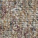 Carpet ParadeOfChampions1215 54466 NatureTrail