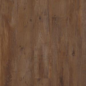 Laminate CameoPlus CAM-Spicewood Spicewood