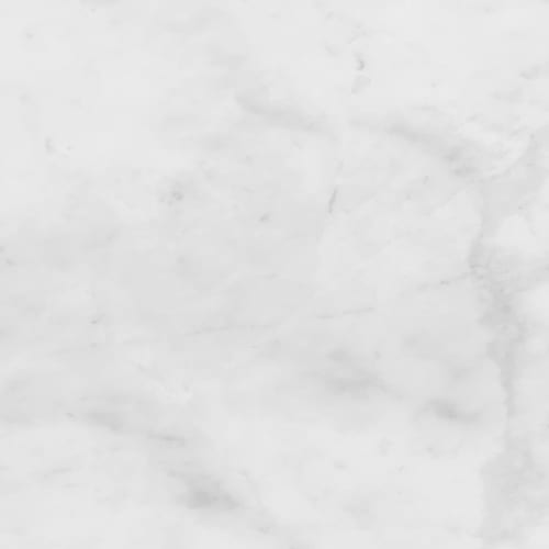 Bianco Carrara White Honed - 12X24
