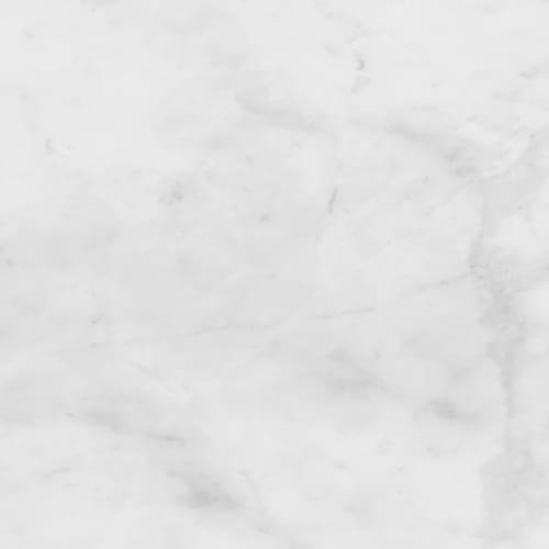 White Honed - 12x24