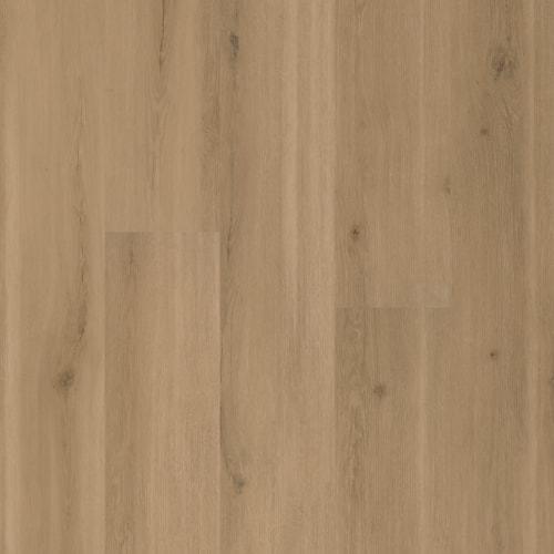 Swiss Oak-Truffle