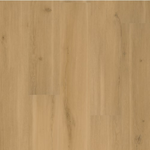 Swiss Oak-Praline