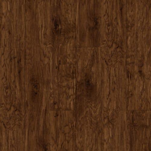 American Hickory