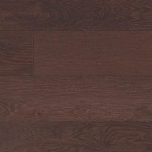 Eloquent Oak