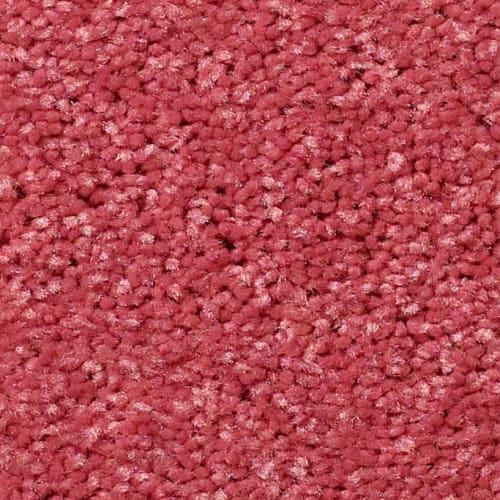 Behold Sassy Pink  830