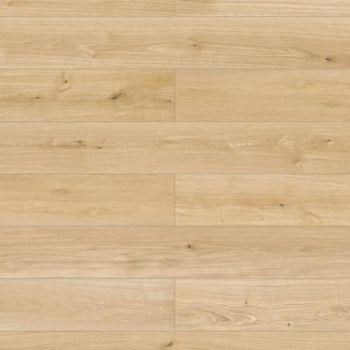 Elandura - Wood Gilmour