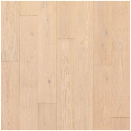 Pelican Oak