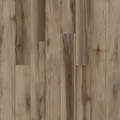 Ensignium - Avant Garde Hawthorne