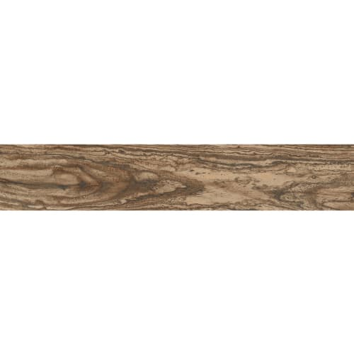 Barque Chestnut Brown
