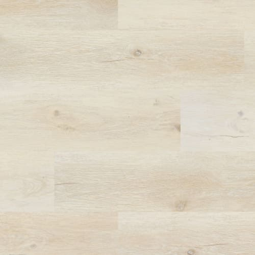 Coretec Pro Plus Flagstaff Oak