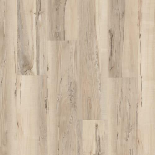 Cupertino 20 Mineral Maple