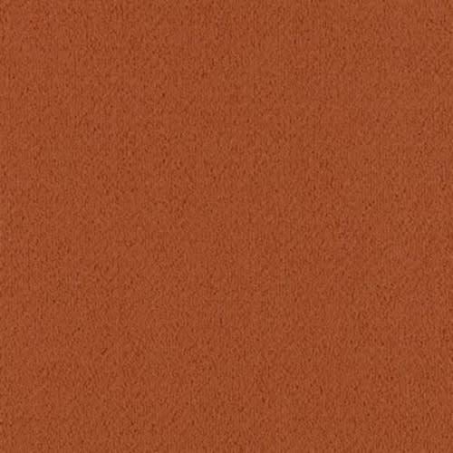 Color Pop 12X36 Cajun Spice 258