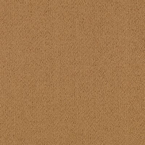 Color Pop 12X36 Mustard Seed 168