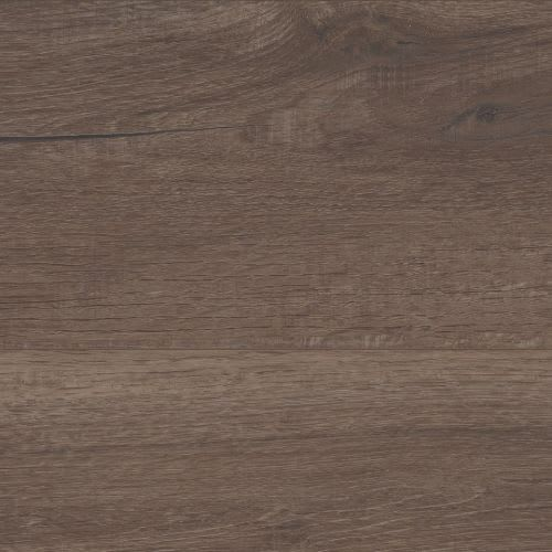 Grande Willis Oak
