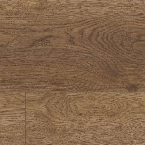 Coretec Plus XL Enhanced Arvon Oak