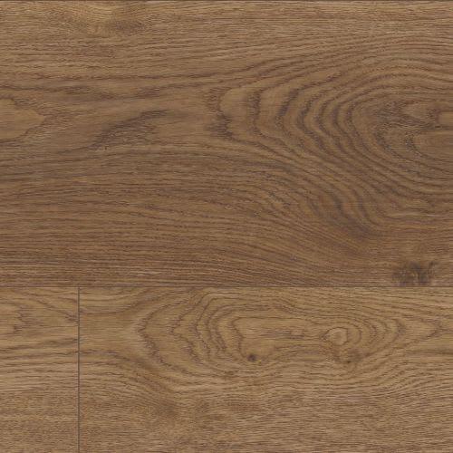 Coretec Plus XL Enhanced Arvon Oak