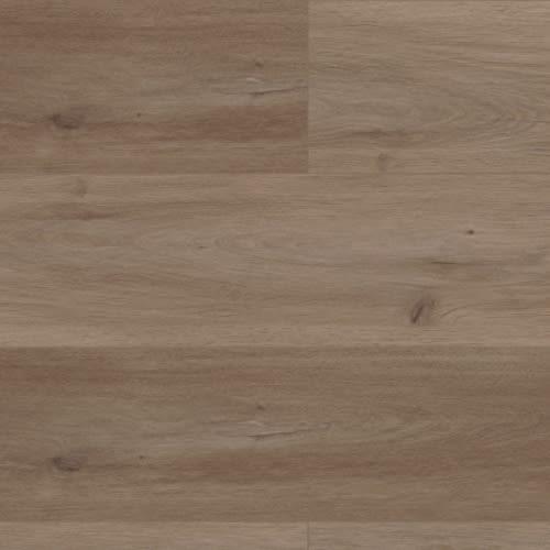 Coretec Pro Plus XL Enhanced HD Buckingham Oak