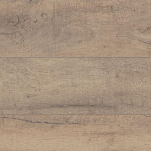 Halsman Oak