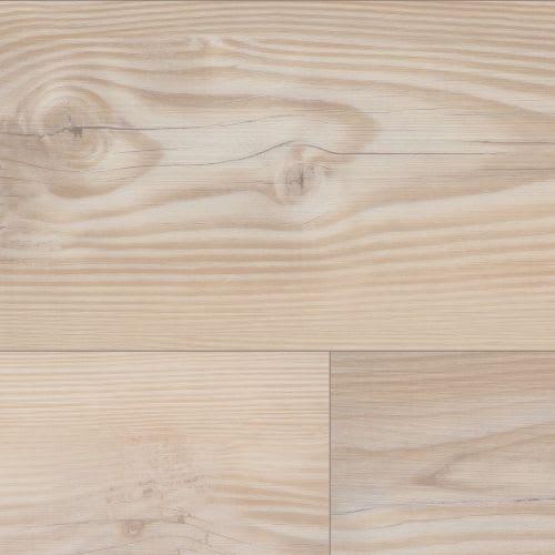 Tolima Pine