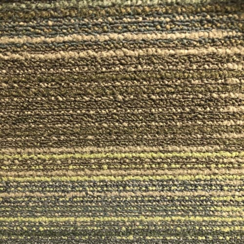Chenille Wrap Reflections