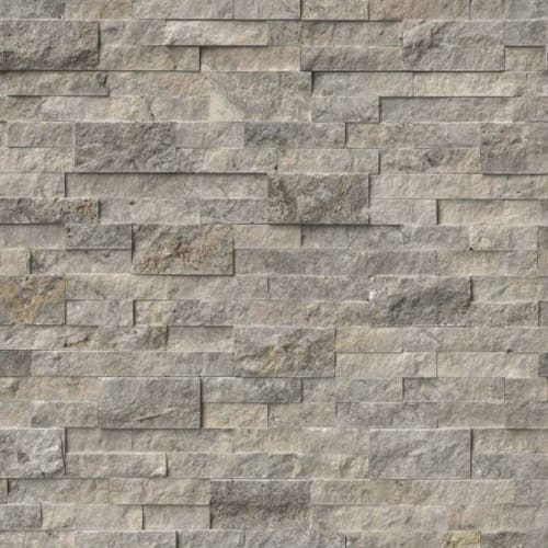 Silver Travertine Gray-Light 6X24