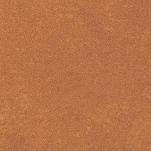 Portfolio - Vivid Orange Burst
