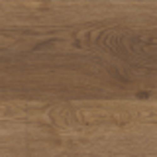 COREtec Plus XL Enhanced in Arvon Oak - Vinyl by USFloors