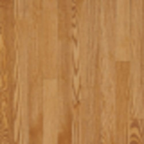 Westchester in Spice 3.25 - Hardwood by Bruce