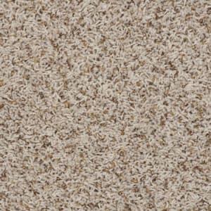 Carpet JonesBeach 0010052V38 SandSwept