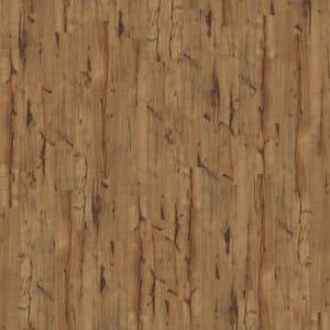 Laminate Landmark 00786SA536 LumberjackHckry