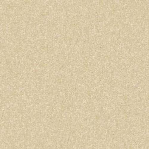 Fido Gold Sunset 00200