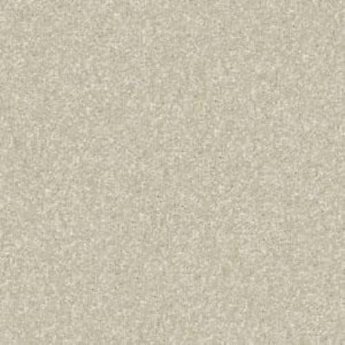 Fido Succulent 00102