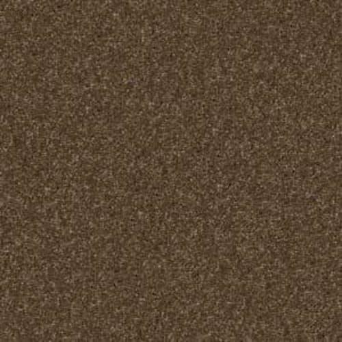 Fido Derby Brown 00703