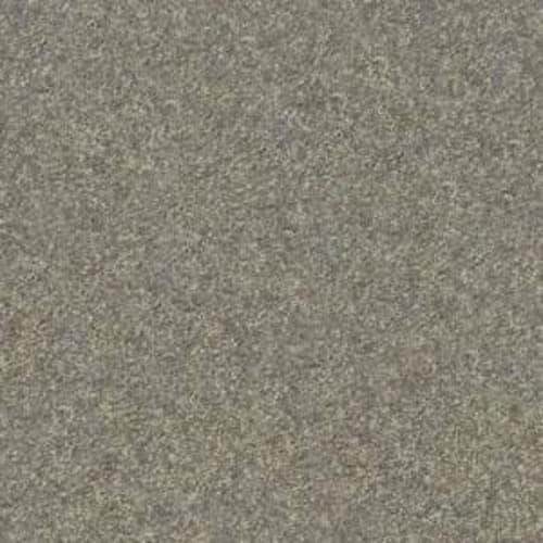 Fido Moondust 00710