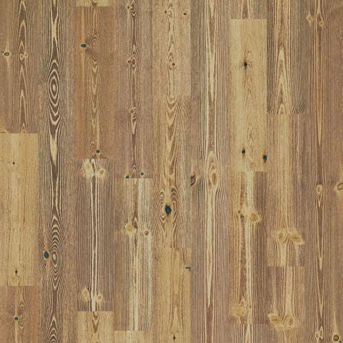 EXQUISITE Spiced Pine 06004